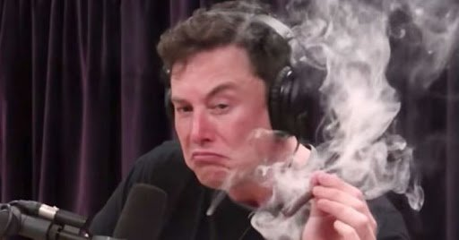 Илон Маск уверовал в Bitcoin