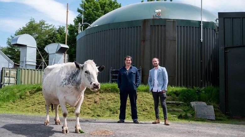 Илон Маск одобрил бы. Британский фермер использует коровий навоз для питания электричеством фермы, добывающей Ethereum