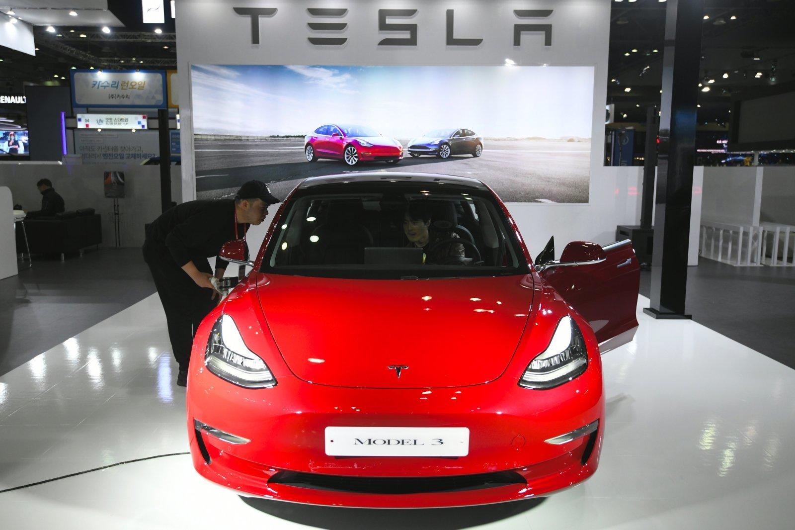 Украинские владельцы Tesla записали видео для Маска— онлаконично ответил