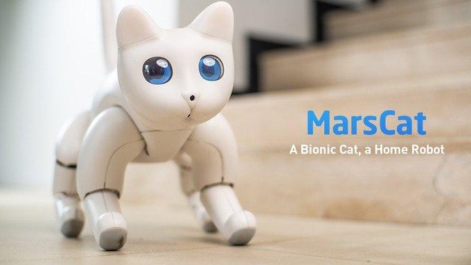 На выпуск робота-кота MarsCat собрано почти в десять раз больше ...