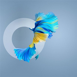 Темы и обои Huawei Mate 40 утекли до анонса