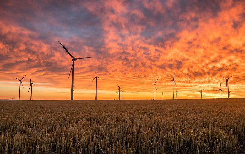 Целый штат в США намерен в обозримом будущем полностью перейти на возобновляемые источники энергии