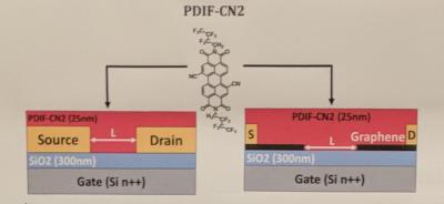 Итальянские исследователи разработали новые органические полевые транзисторы на основе графена