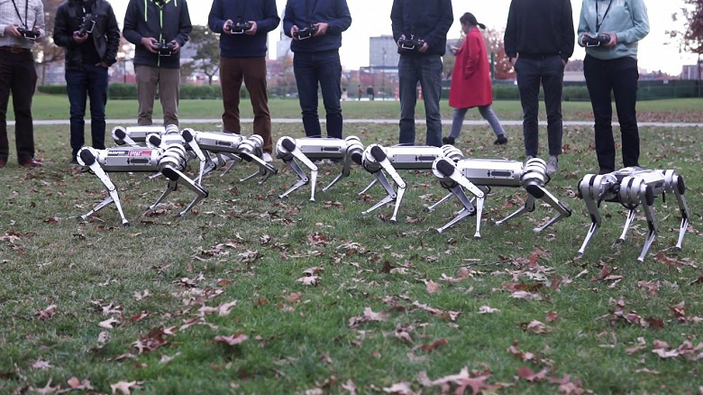 Видео дня: стайка четвероногих мини-роботов кувыркается, делает сальто и гоняет мячик