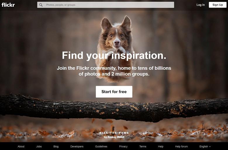 Годовая подписка на сервис Flickr Pro подрожала на 20%