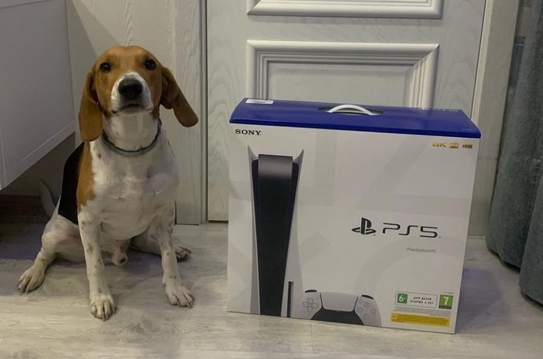 Неразбериха с Sony PlayStation 5 в России. Почему российские ритейлеры не справились