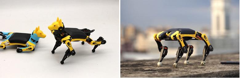 Робот-собака Bittle размером с ладонь вызвал большой интерес из-за своих возможностей и цене