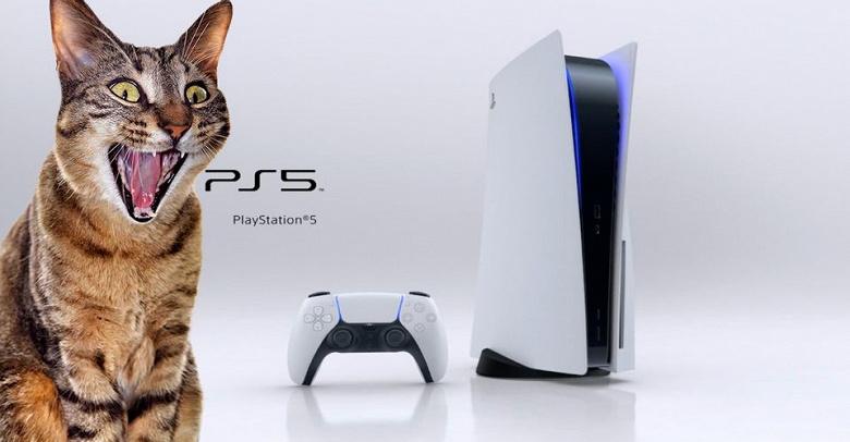 Самое большое разочарование покупателей Sony PlayStation 5. Вместо приставки может приехать кошачий корм и много чего ещё