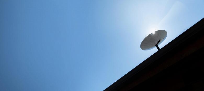 У спутникового интернета Илона Маска появились новые враги: работу терминалов Starlink нарушают голуби