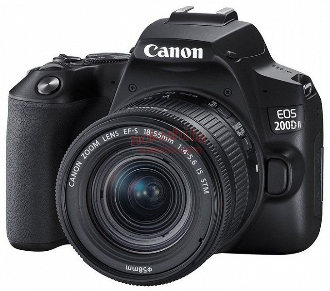 Раскрыты характеристики и изображения бюджетной зеркальной камеры Canon EOS 250D, поддерживающей запись видео 4К