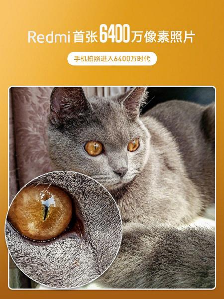 Redmi анонсировала свой первый смартфон с камерой на 64 Мп. Пример фото