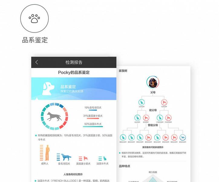 Xiaomi выпустила генетический тест для кошек и собак