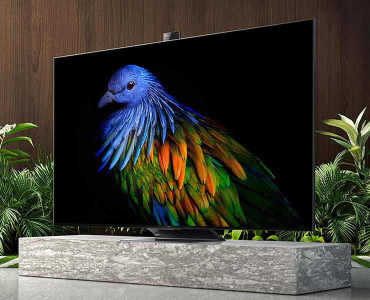75 дюймов, 4K QLED 120 Гц, Wi-Fi 6, 100 Вт звука, 48 Мп. В Китае стартуют продажи топовых телевизоров Xiaomi Mi TV 6 Extreme Edition
