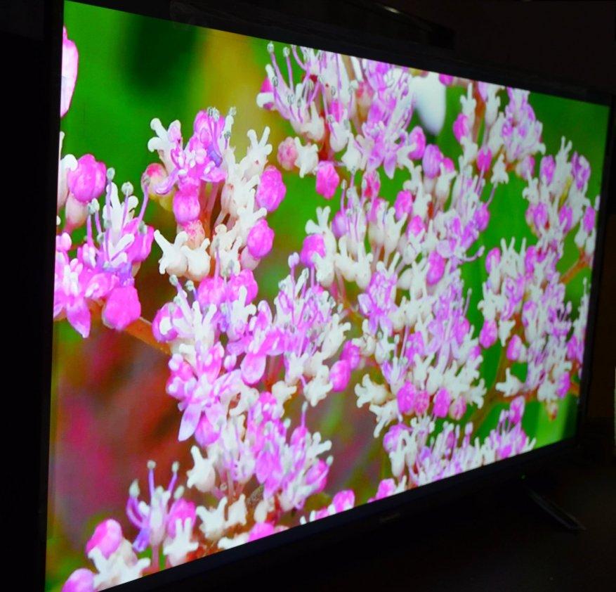Skyworth TV 40