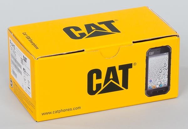 cat3-02.jpg