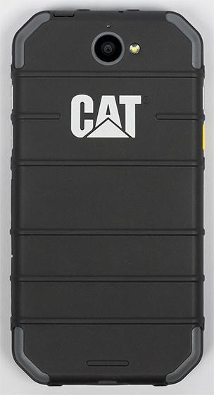 cat3-024.jpg