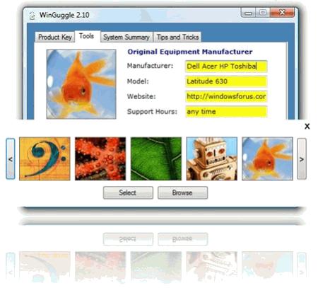Интерфейс WinGuggle