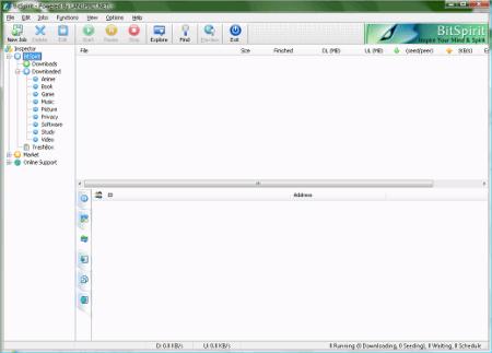 Файловые обменники: BitSpirit v.3.6.0.300