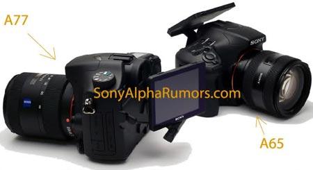 Выпуск камер Sony A77 и A65 намечен на август