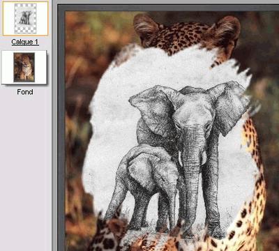 Фрагмент интерфейса PhotoFiltre Studio