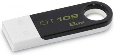 Kingston DataTraveler 109