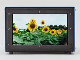 ��������� �������������������� ������ ����������� 3840 x 2160 ��������, ��������� � Ortus Technology, ����� 9,6 �����