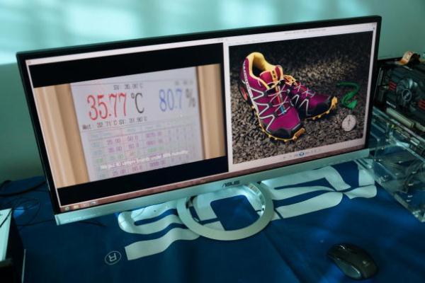 Asus MX229Q