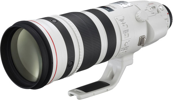Продажи телеобъектив Canon EF 200-400mm f/4L IS USM Extender 1.4x начинаются 29 мая по цене 11800 евро