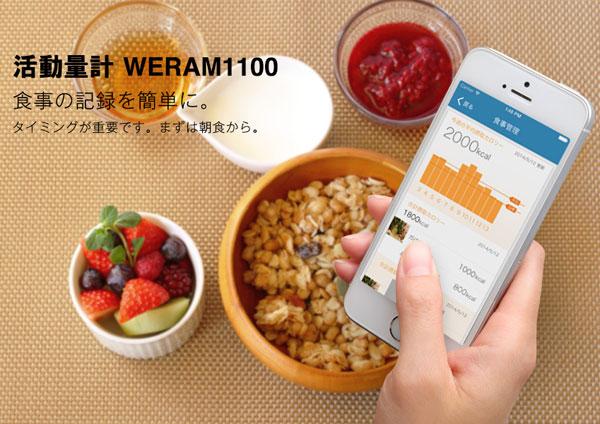 Toshiba WERAM1100