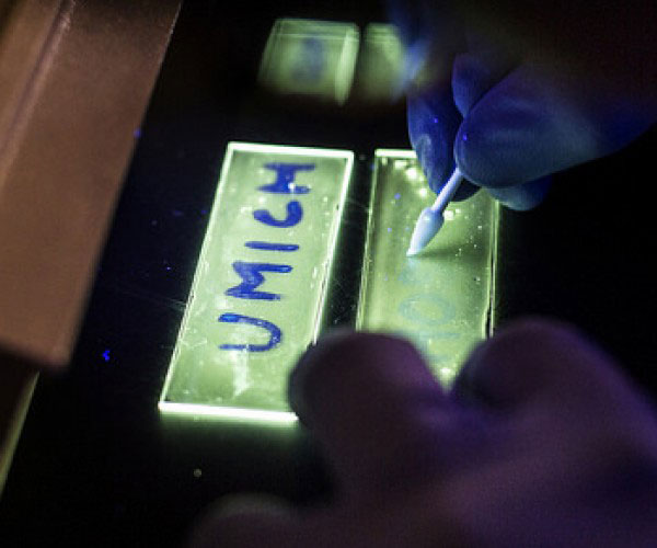 В настоящее время в фосфоресцентных органических светодиодах используются вещества с добавками редких металлов