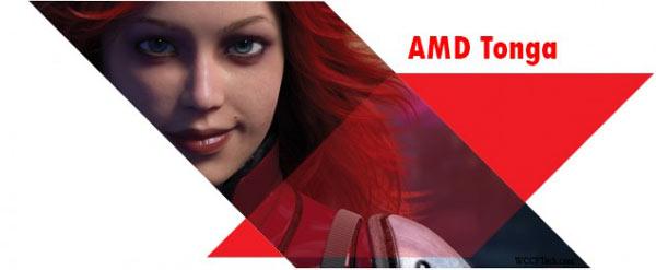 Выход GPU AMD Tonga ожидается в третьем квартале