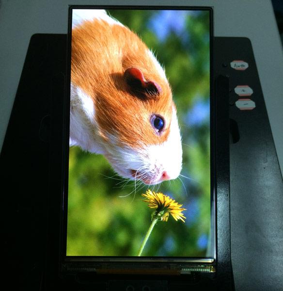 Пока только Samsung и LG способны выпускать панели AMOLED высокого разрешения