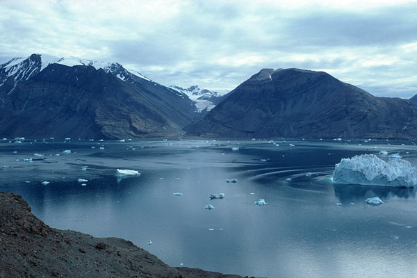 Ожидается, что GPU Arctic Islands будут выпускаться по нормам 16 или 14 нм