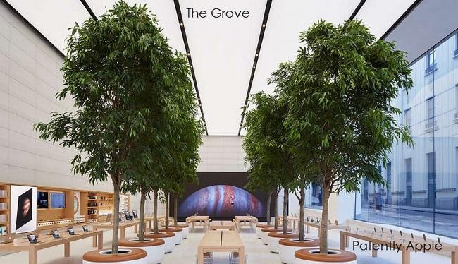 Apple патентует идею деревьев, используемых для украшения интерьера своих магазинов