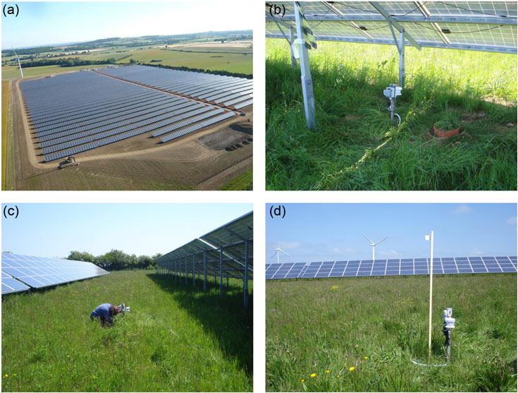 Британские ученые обнаружили, что почва под солнечными батареями недополучает солнечного тепла