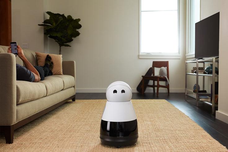 Начат прием предварительных заказов на Mayfield Robotics Kuri