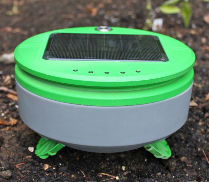 Tertill напоминает робота Roomba