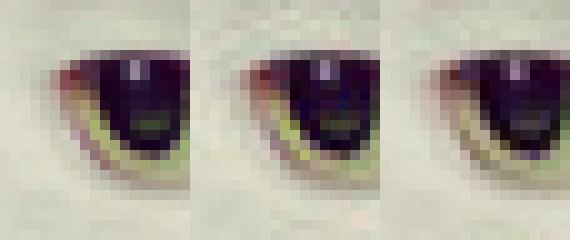 Google представила алгоритм сжатия изображений с открытым исходным кодом Guetzli