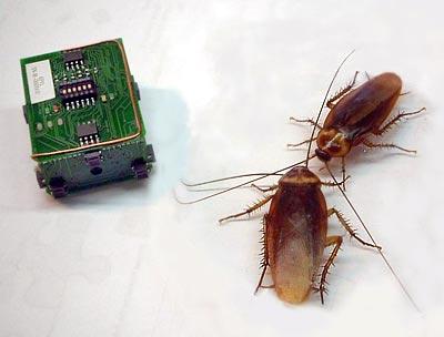...будет ЭлЛюкс вы забудете о существовании тараканов, мух, комарей и др.