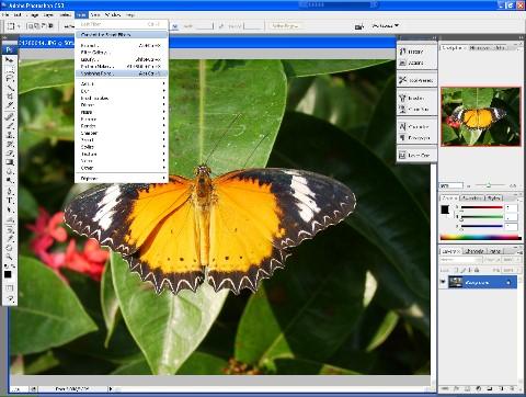 графический редактор adobe photoshop скачать бесплатно