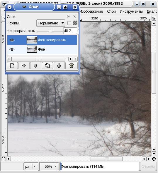 GIMP. Полупрозрачный размытый слой создает эффект мягкого фокуса.