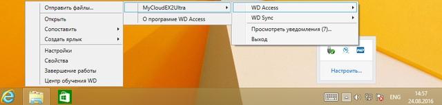 Интерфейс WD Access