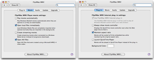 Lets you play any files that QuickTime supports on your Mac